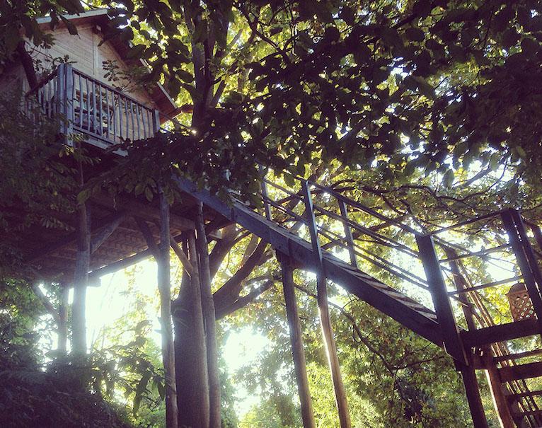 Casa sull 39 albero per vivere una vacanza avventurosa dove - Il giardino dei semplici manta ...