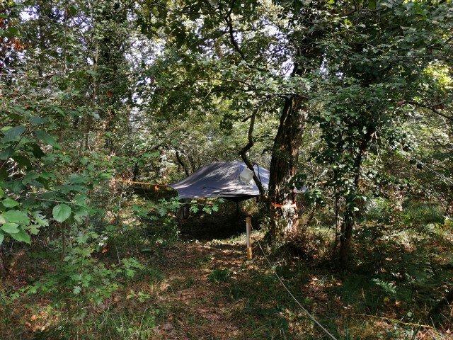 nido nel bosco tenda